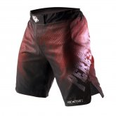 Купить Шорты Peresvit Legend Fightshorts Sunset   недорого